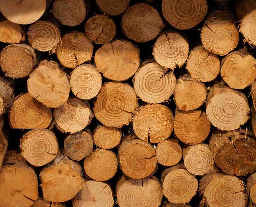 hout, houten planken, eikenhouten planken groenen veldhoven